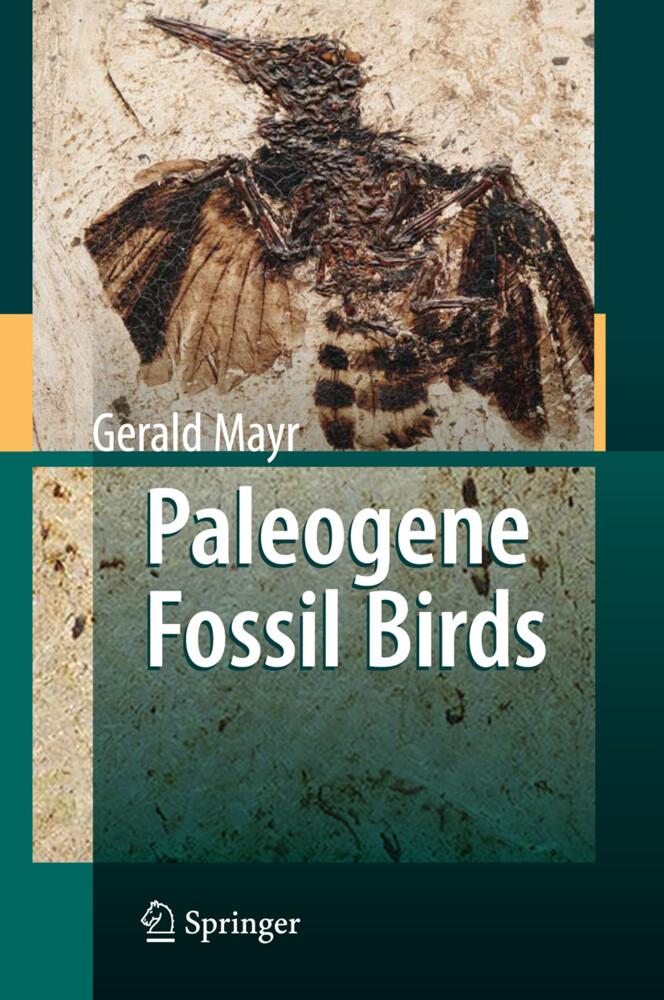 Paleogene Fossil Birds als Buch von Gerald Mayr