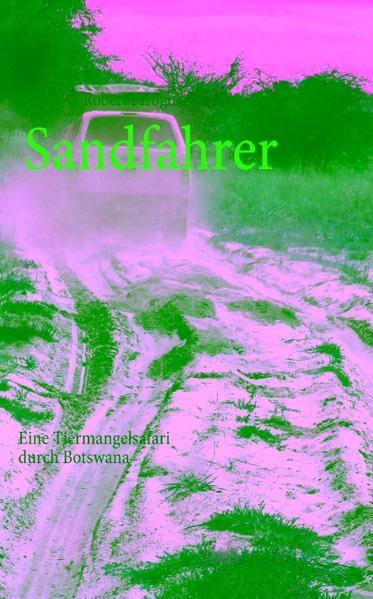 Sandfahrer als Buch von Robert Pfrogner