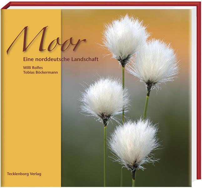 Moor als Buch von Tobias Böckermann
