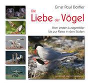 Die Liebe der Vögel
