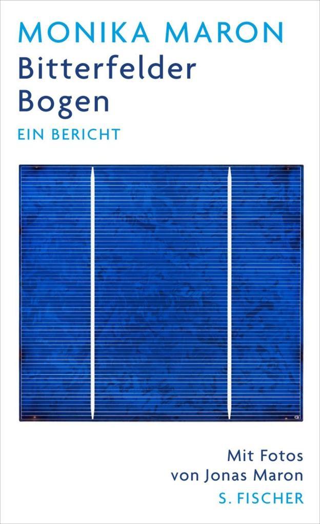 Bitterfelder Bogen als Buch von Monika Maron