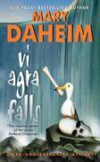 VI Agra Falls