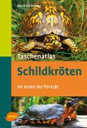 Taschenatlas Schildkröten