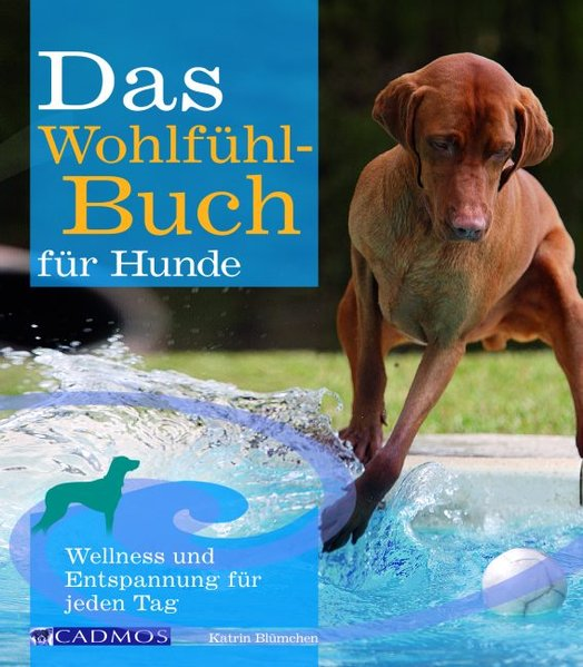 Das Wohlfühlbuch für Hunde als Buch von Katrin ...