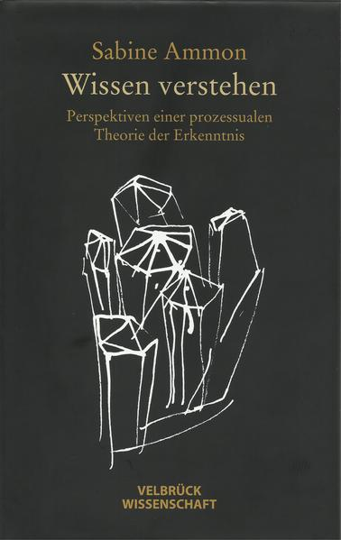 Wissen verstehen als Buch von Sabine Ammon