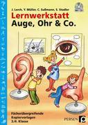 Lernwerkstatt Auge, Ohr & Co.