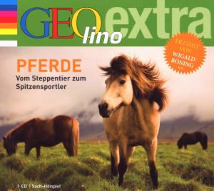 Pferde-Wild,schnell und schön