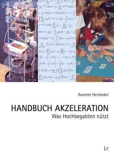 Handbuch Akzeleration als Buch von Annette Hein...
