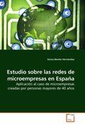 Estudio sobre las redes de microempresas en España