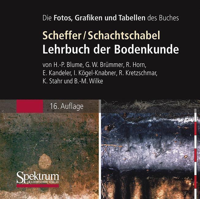 Die Abbildungen des Buches: Scheffer/Schachtsch...