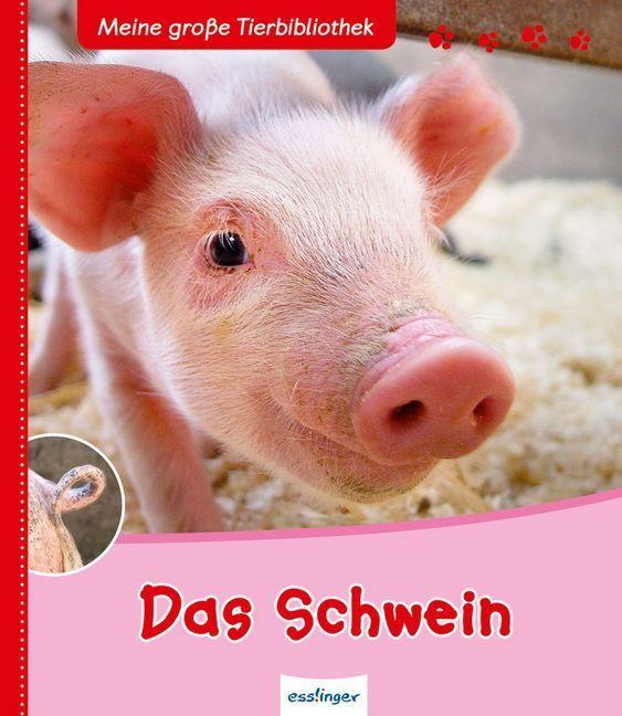 Das Schwein als Buch