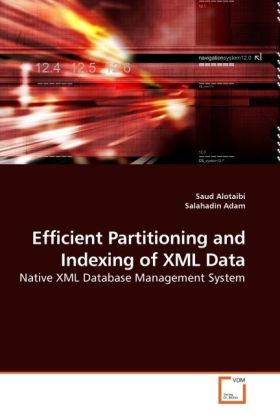 Efficient Partitioning and Indexing of XML Data...