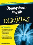 Übungsbuch Physik für Dummies
