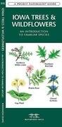 Iowa Trees & Wildflowers: A Folding Pocket Guide to Familiar Plants
