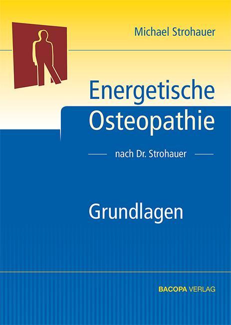 Energetische Osteopathie als Buch von Michael S...