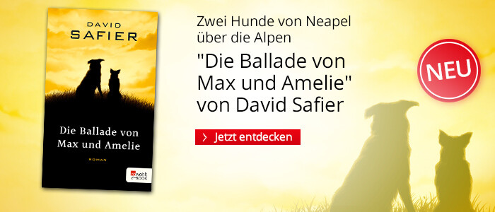 Die Ballade von Max und Amelie von David Safier bei Hugendubel