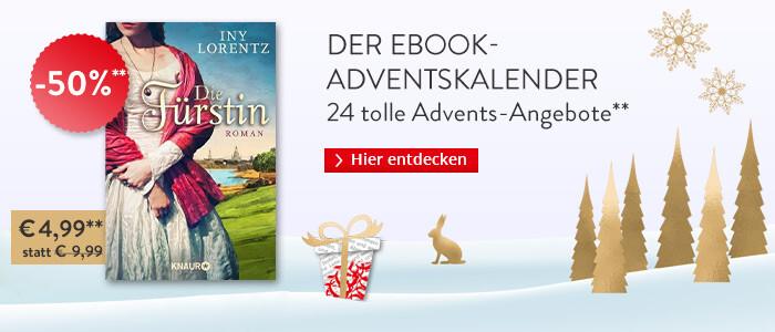 Iny Lorentz: Die Fürstin